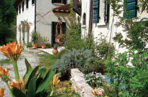 Kräuter zum Heilen und Genießen - Veneto, Italien